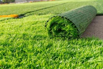 Công ty AFD grass - chuyên cung cấp thi công sân cỏ nhân tạo