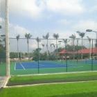 San tennis tai TT duc Pho tinh Quang Ngai
