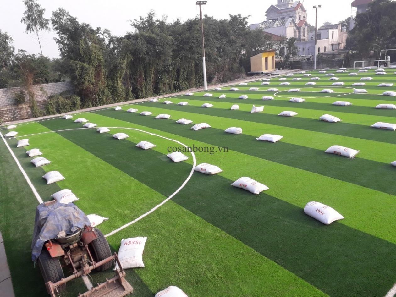SaN BoNG PHu Ly, Ha NAM _PQoAW → Công ty AFD grass