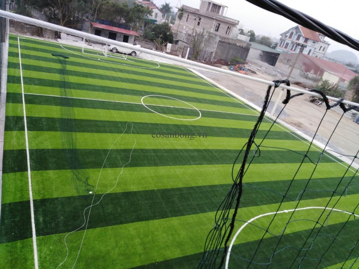 SaN BoNG PHu Ly, Ha NAM _qxAQ9 → Công ty AFD grass