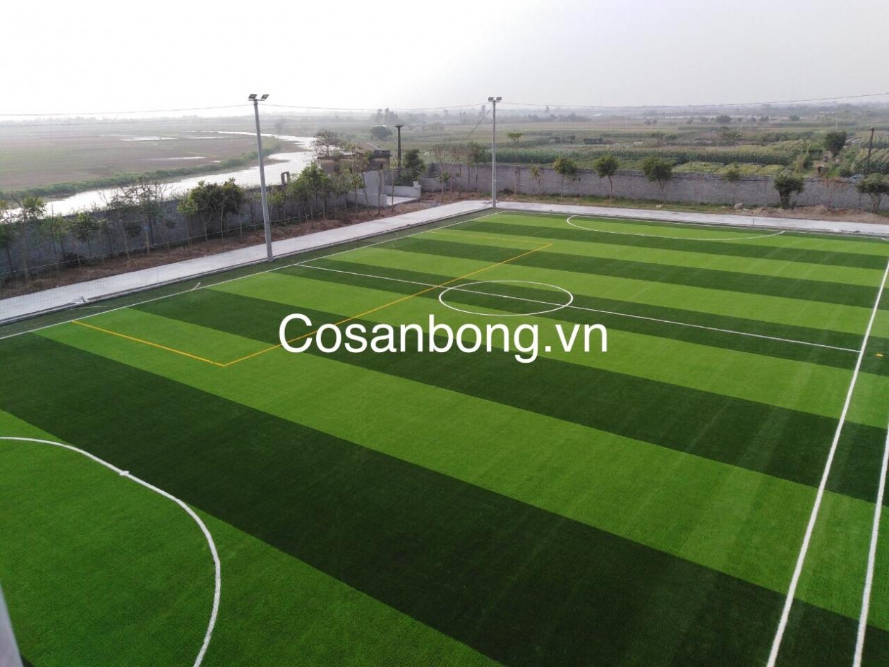 San Bong Quynh Phu _ncKxo → Công ty AFD grass