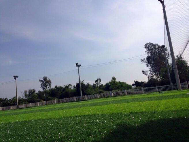AFD thi cong san bong da co nhan tao tai TT duc Pho, Quang Ngai _tWGqM → Công ty AFD grass