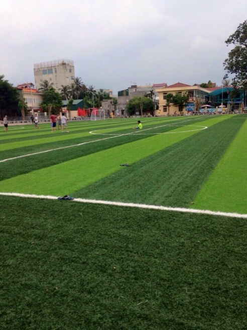 AFD cung cap co nhan tao va thi cong san van dong huyen Quoc Oai _pSec5 → Công ty AFD grass