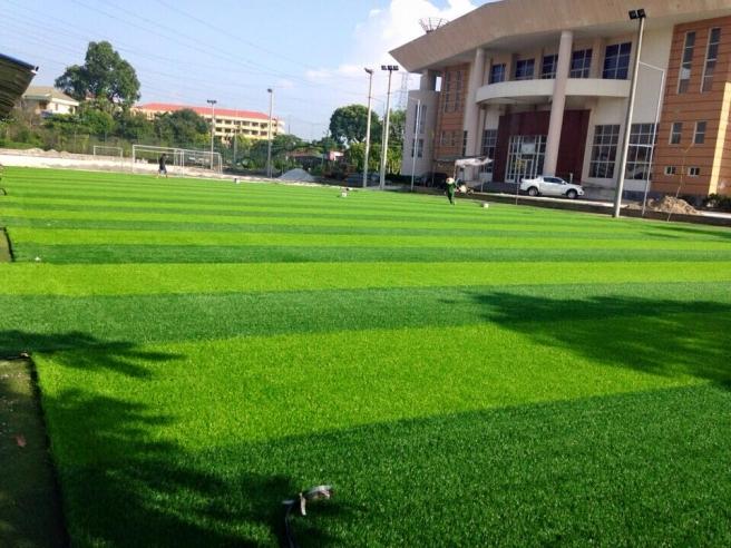 Thi cong san bong da truong dai hoc Nong Lam Thai Nguyen _NTFCz → Công ty AFD grass