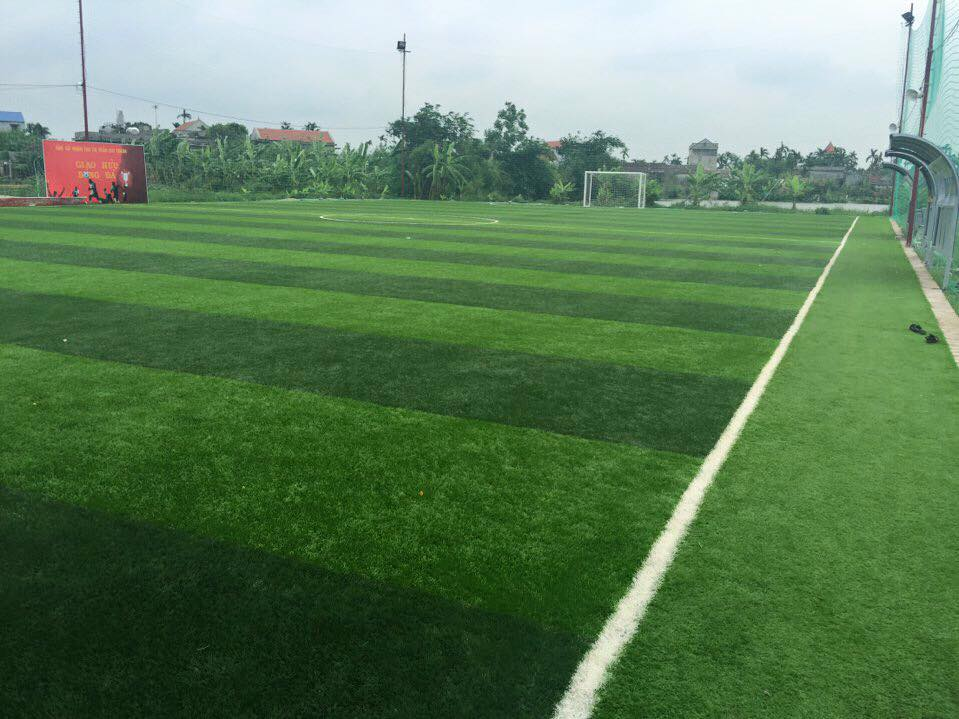 AFD Thi cong san bong tai thi tran Cat Thanh  _cJio3 → Công ty AFD grass