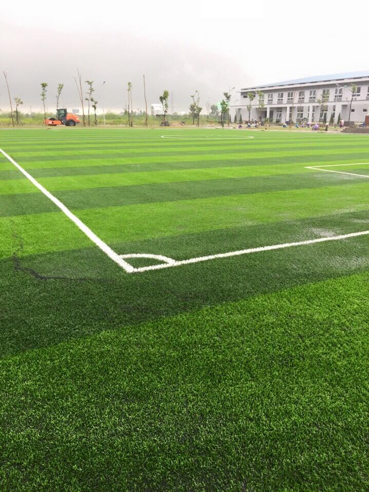 San bong da co nhan tao truong cao dang dai Viet _Zw5sa → Công ty AFD grass