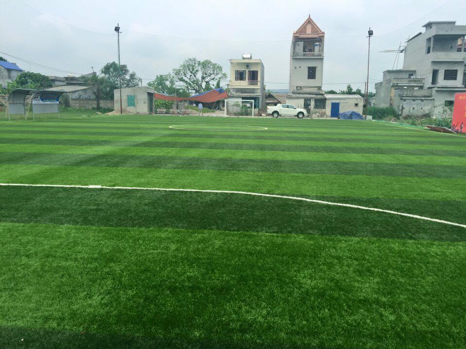 AFD Thi cong san bong tai thi tran Cat Thanh  _qxAQ9 → Công ty AFD grass