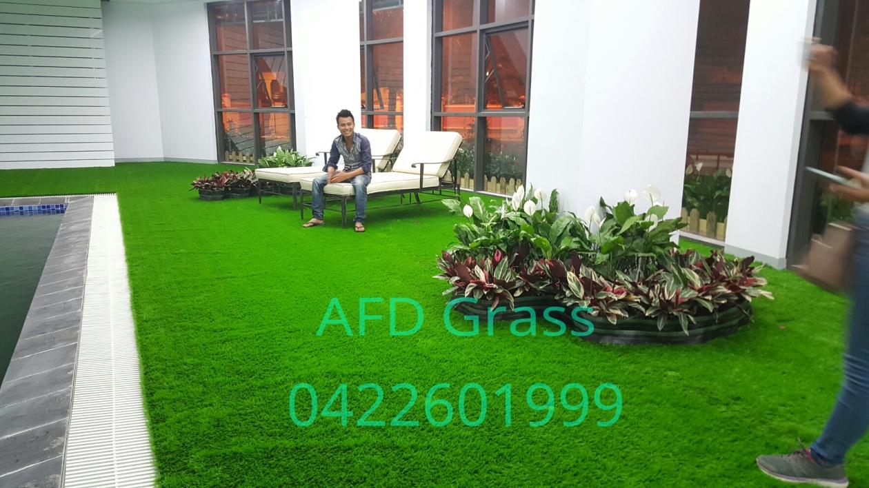 Cung cap va thi cong  co nhan tao quanh be boi trong nha truong TH SCHOOL   duong Chua Boc , Q. dong da , TP. Ha Noi _EwlSP → Công ty AFD grass