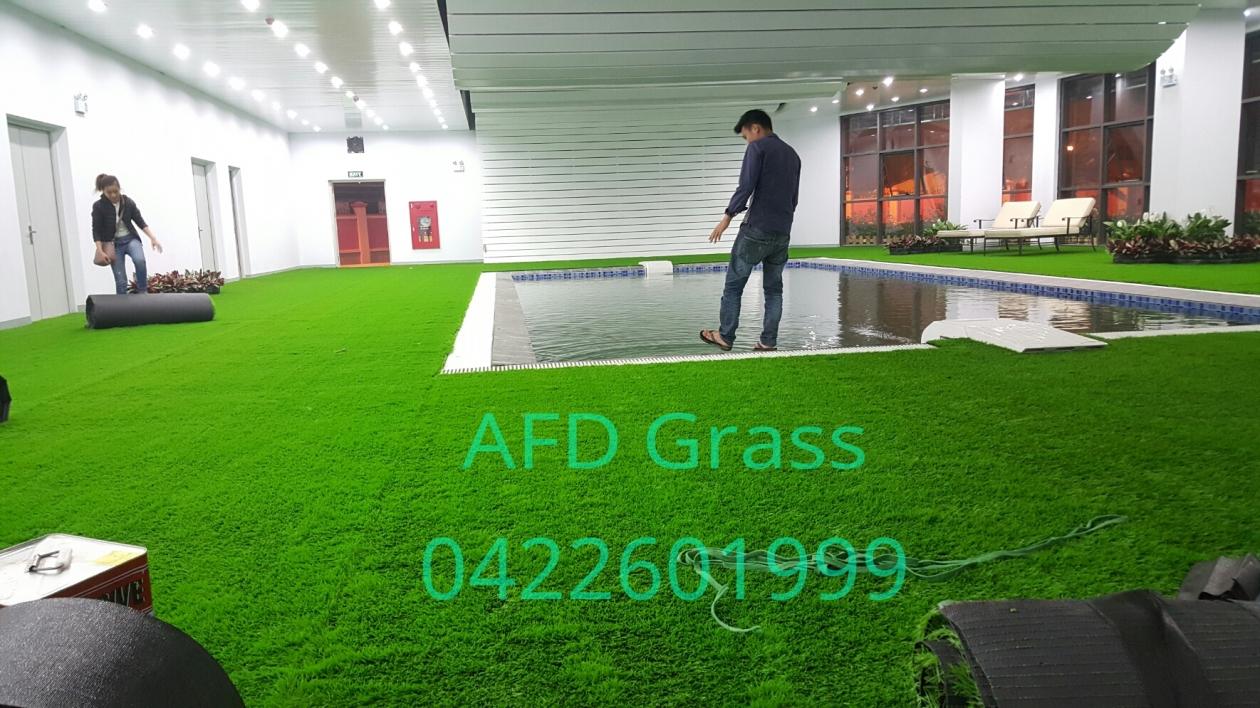 Cung cap va thi cong  co nhan tao quanh be boi trong nha truong TH SCHOOL   duong Chua Boc , Q. dong da , TP. Ha Noi _wXmSO → Công ty AFD grass
