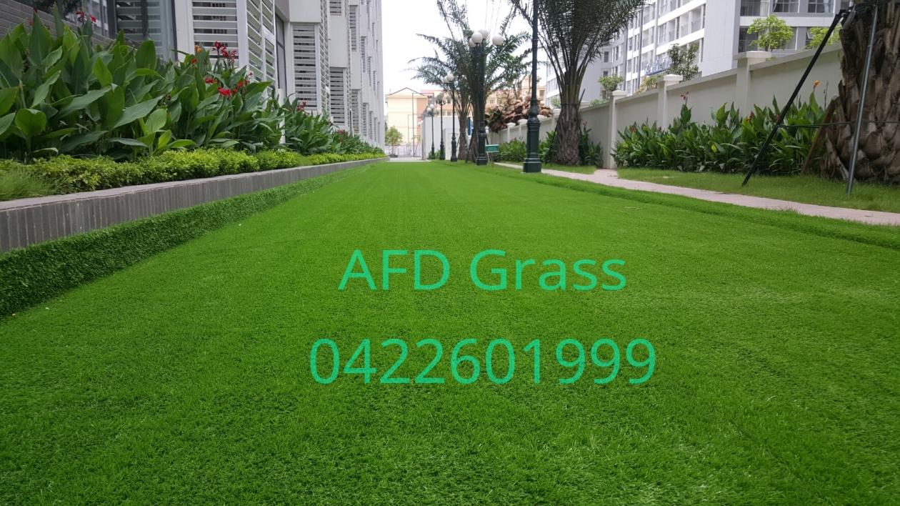 THI CoNG CoNG TRiNH  VINSCHOOL TIMES CITY _FS13k → Công ty AFD grass