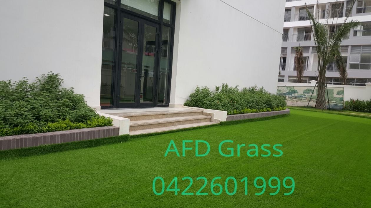 THI CoNG CoNG TRiNH  VINSCHOOL TIMES CITY _Q1FPG → Công ty AFD grass