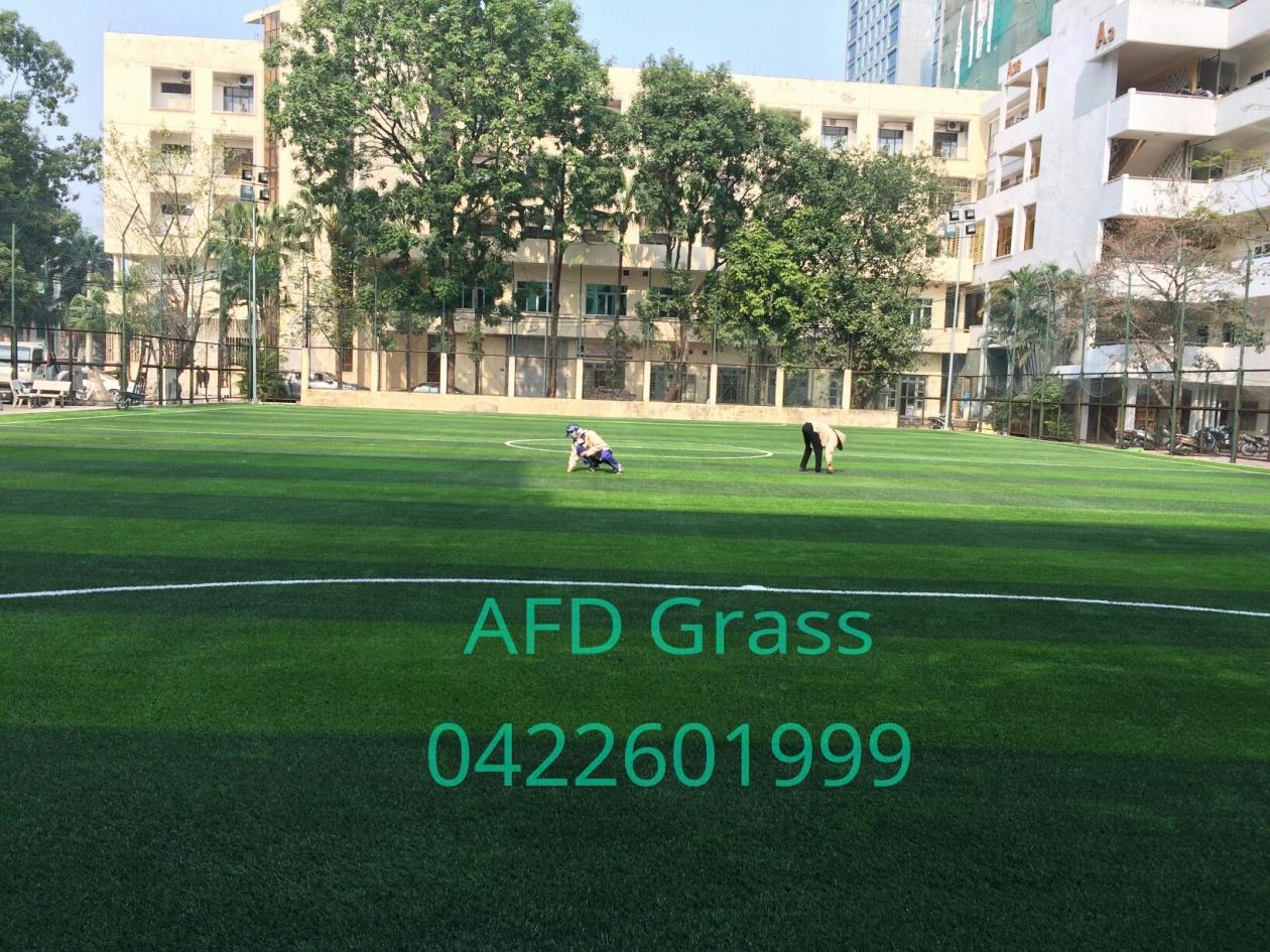 CoNG TRiNH SaN BoNG TRuoNG dH GIAO THoNG VaN TaI Ha NoI _axF2u → Công ty AFD grass