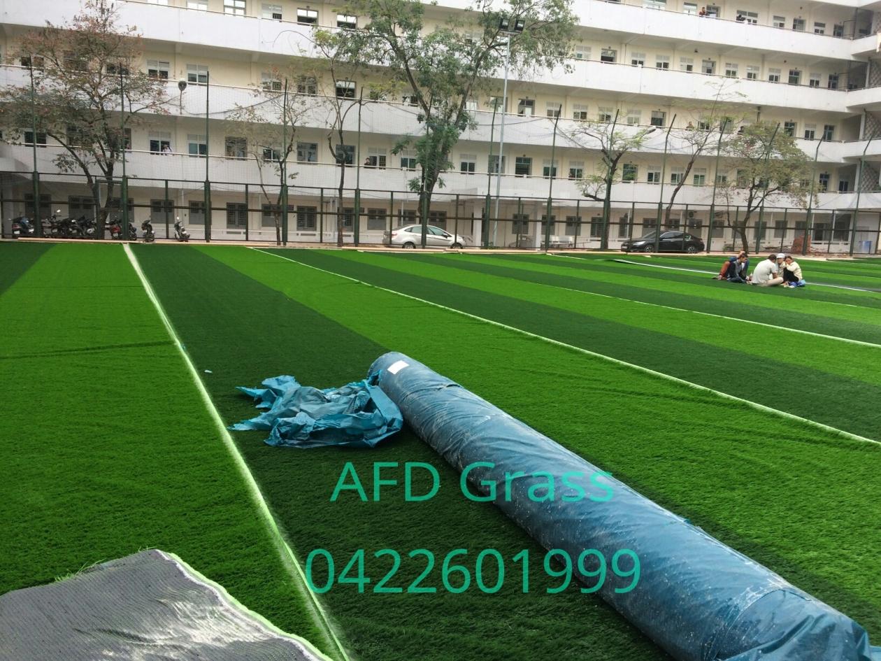 CoNG TRiNH SaN BoNG TRuoNG dH GIAO THoNG VaN TaI Ha NoI _3Bk6p → Công ty AFD grass
