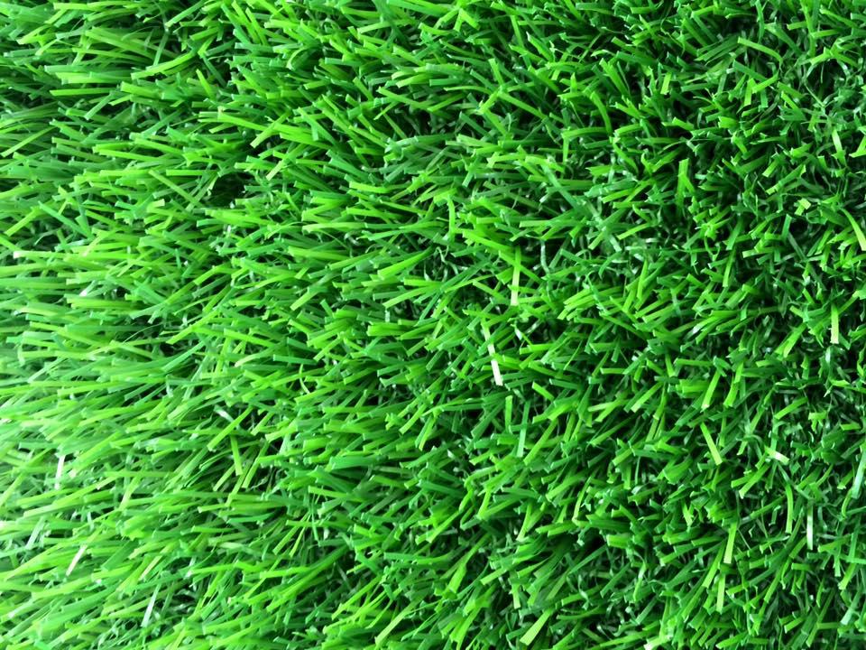 Co nhan tao AF - 3018 _yVOLG → Công ty AFD grass