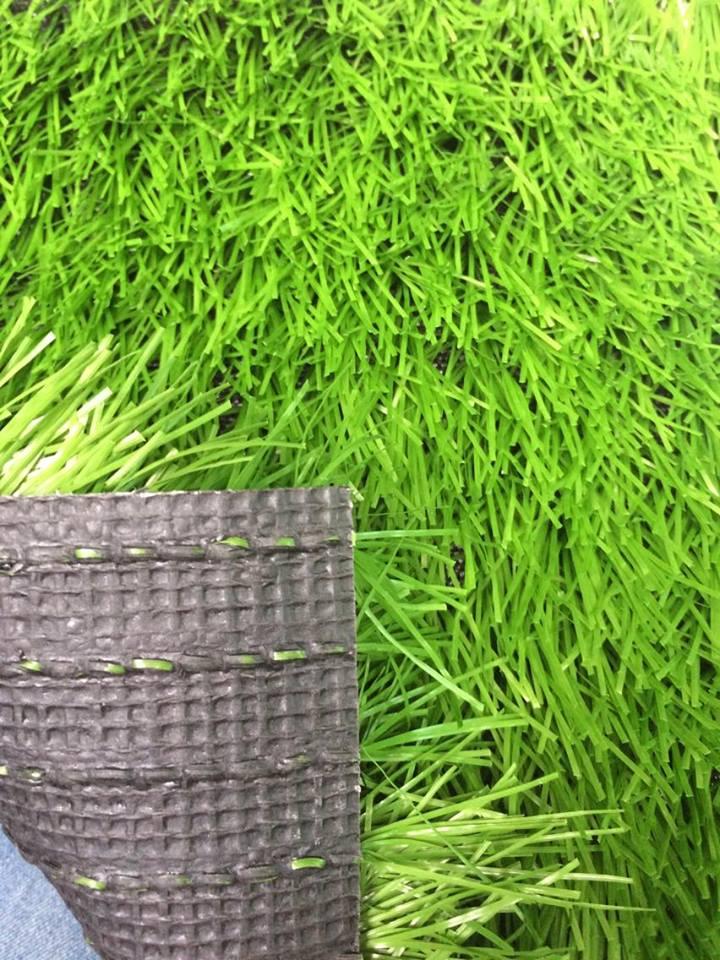 Co Nhan Tao AF-G4016G _0NJP6 → Công ty AFD grass