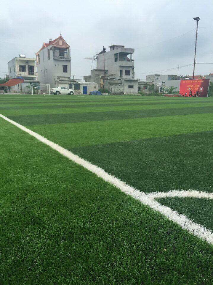 Thi cong san bong tai TT, Cat Thanh, Truc Ninh, TP Nam dinh _EdRc6 → Công ty AFD grass