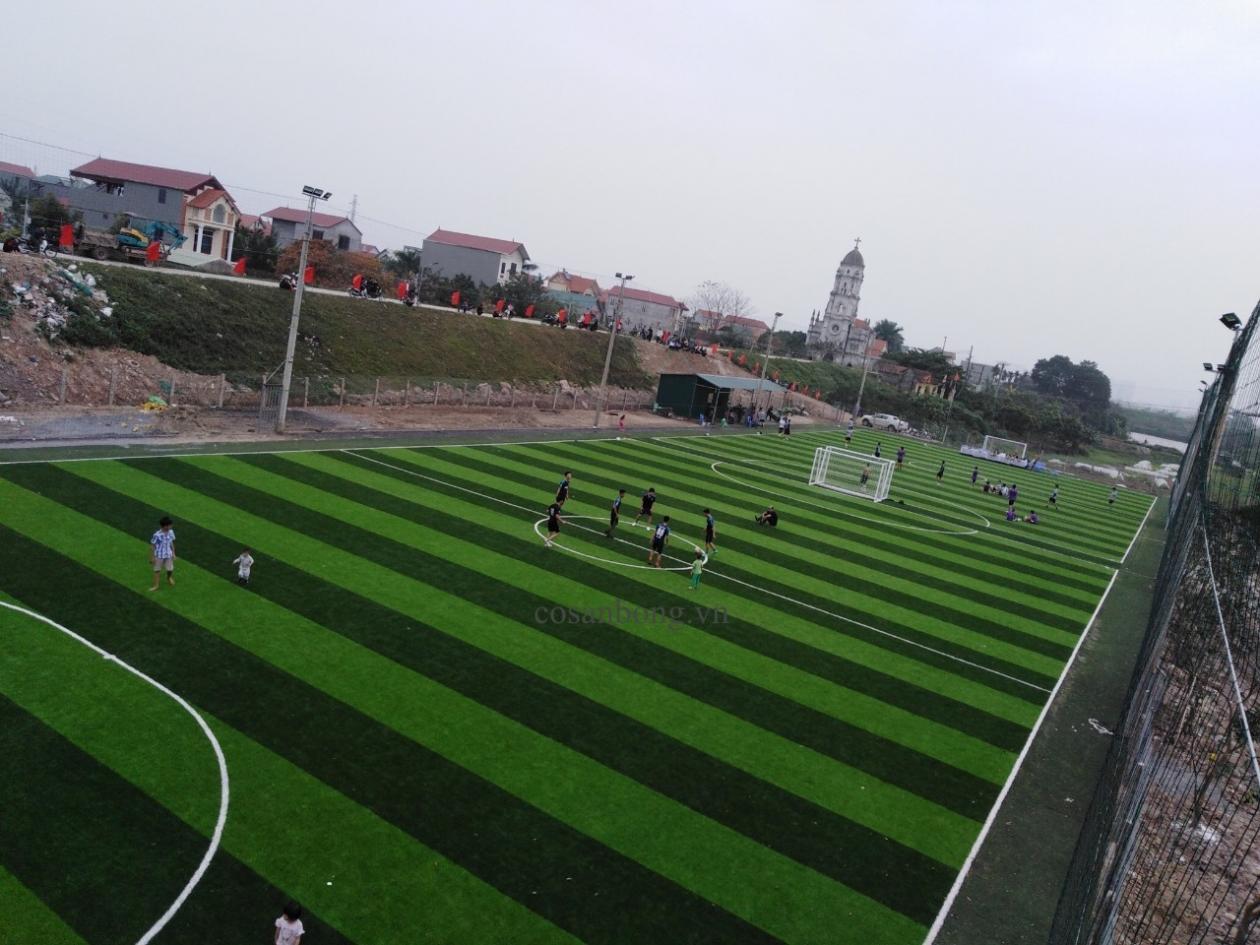 SaN BoNG ANCO LaI Du, HOaI duC Ha NoI _DuYzU → Công ty AFD grass