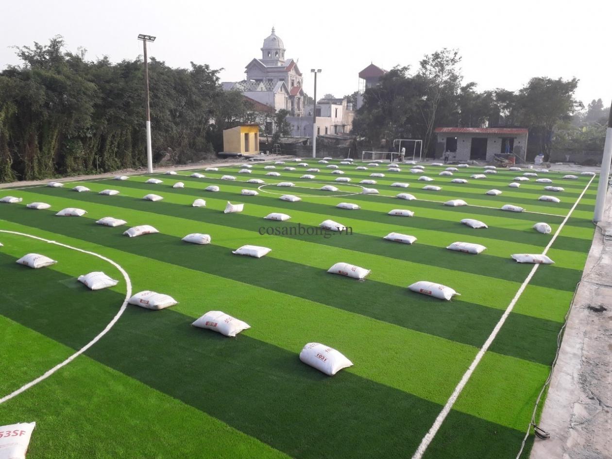 SaN BoNG PHu Ly, Ha NAM _Nv3MV → Công ty AFD grass