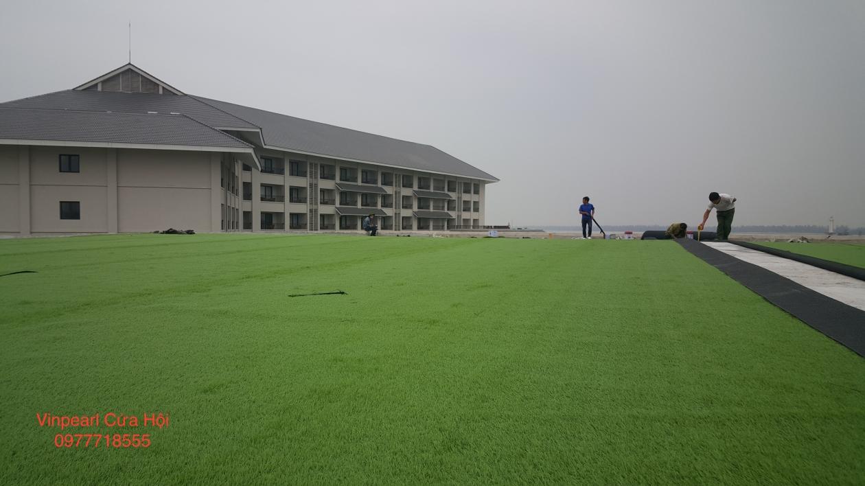 Tham co nhan tao tai Vinpearl Cua Hoi _U7kyO → Công ty AFD grass