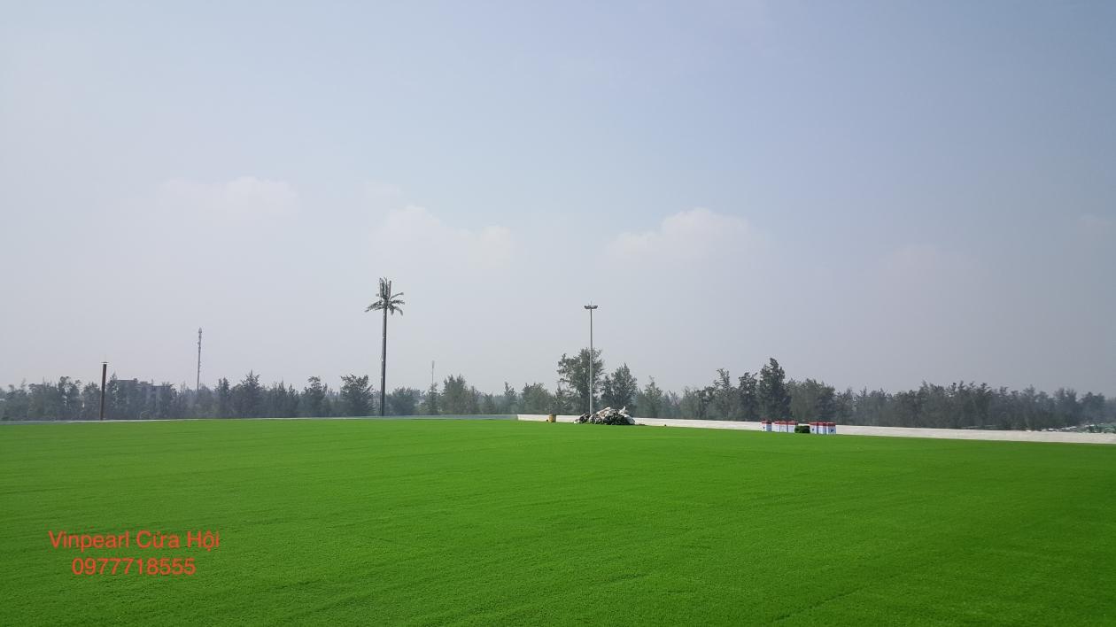 Tham co nhan tao tai Vinpearl Cua Hoi _w9uwK → Công ty AFD grass