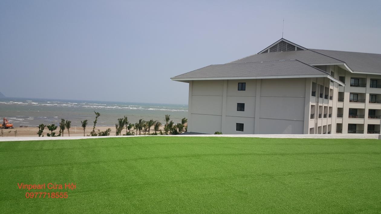 Tham co nhan tao tai Vinpearl Cua Hoi _EealN → Công ty AFD grass