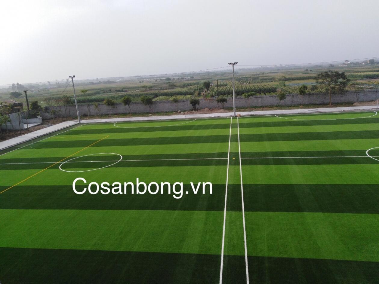 San Bong Quynh Phu _z6ssb → Công ty AFD grass