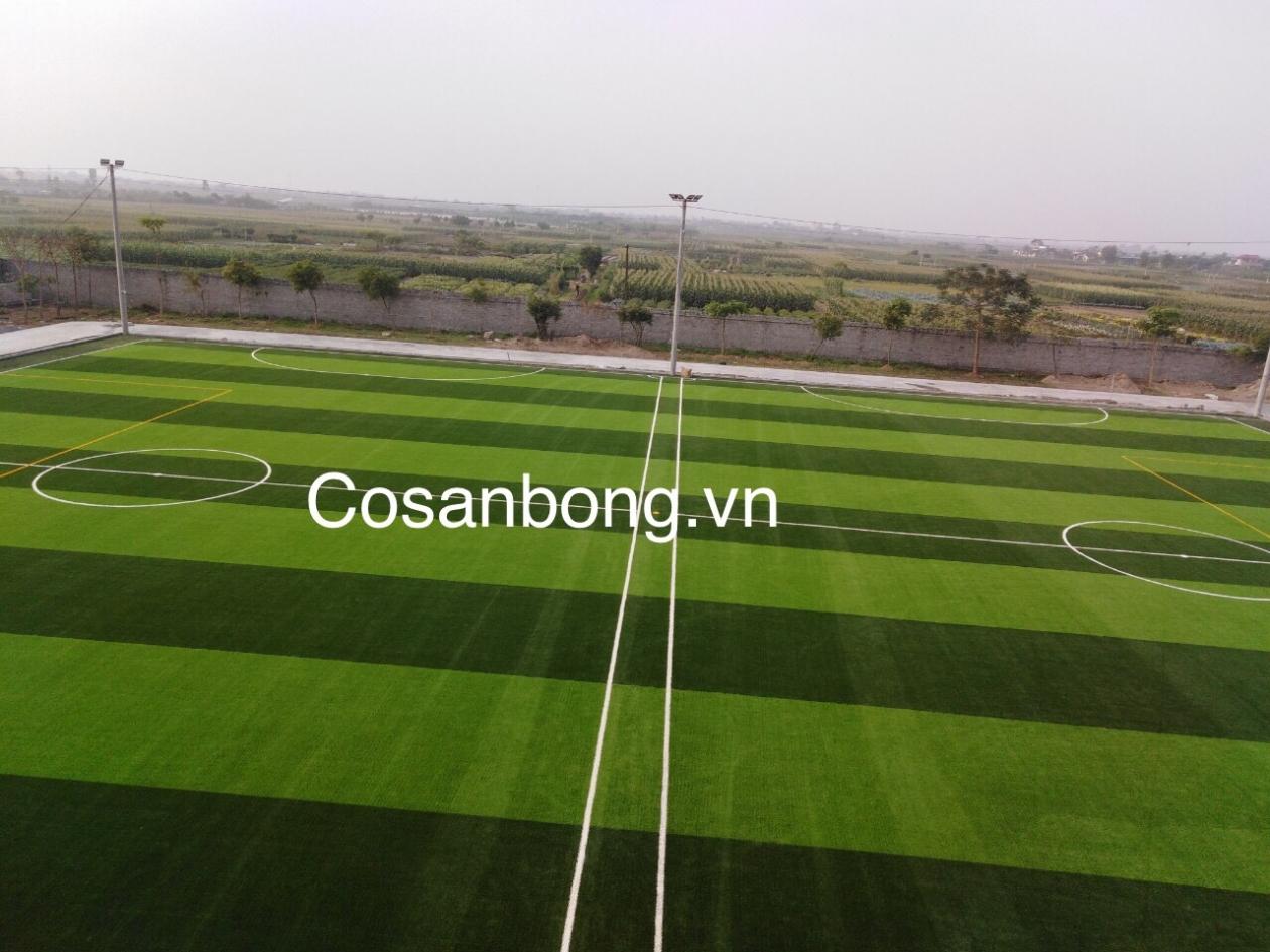 San Bong Quynh Phu _2NAfB → Công ty AFD grass