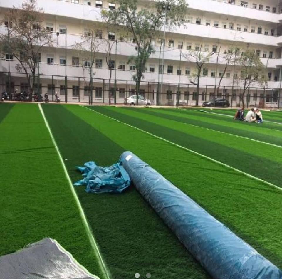 Co nhan tao A650414ZD13001 _XkD0n → Công ty AFD grass