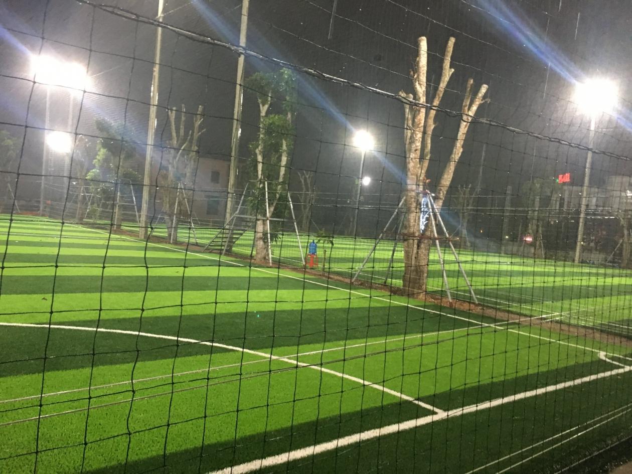San bong Yen Thanh Nghe An _9ADf8 → Công ty AFD grass