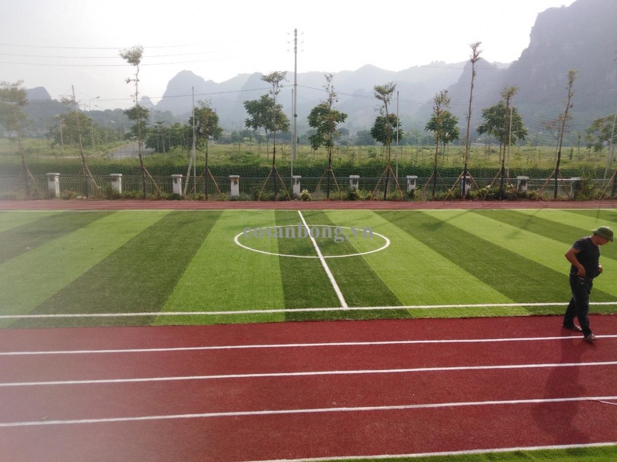 AFD Grass thi cong san co nhan tao va duong chay truong MN Hoa Da Hop - Hoa Binh _d8IFh → Công ty AFD grass