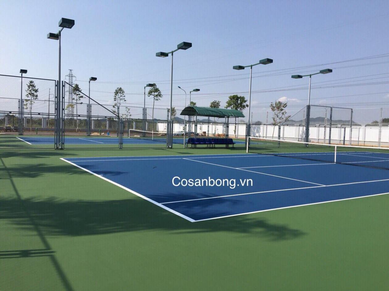 San Tennis - So Tai Chinh Tuyen Quang _FlKu3 → Công ty AFD grass