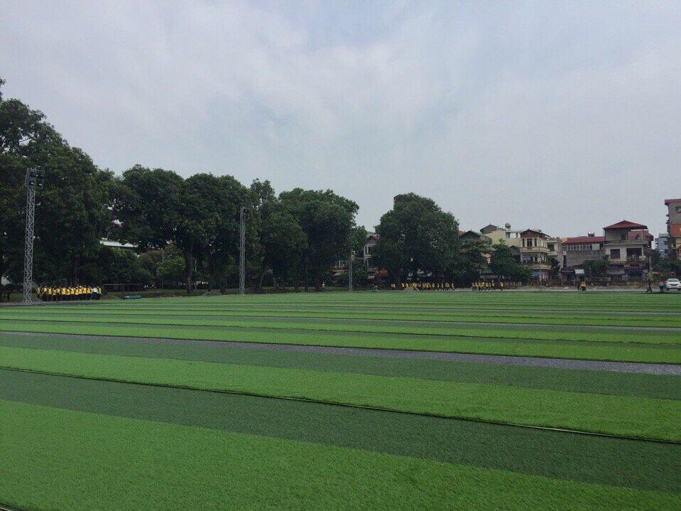 SaN BoNG HoC VIeN NoNG NGHIeP VIeT NAM _da9KY → Công ty AFD grass