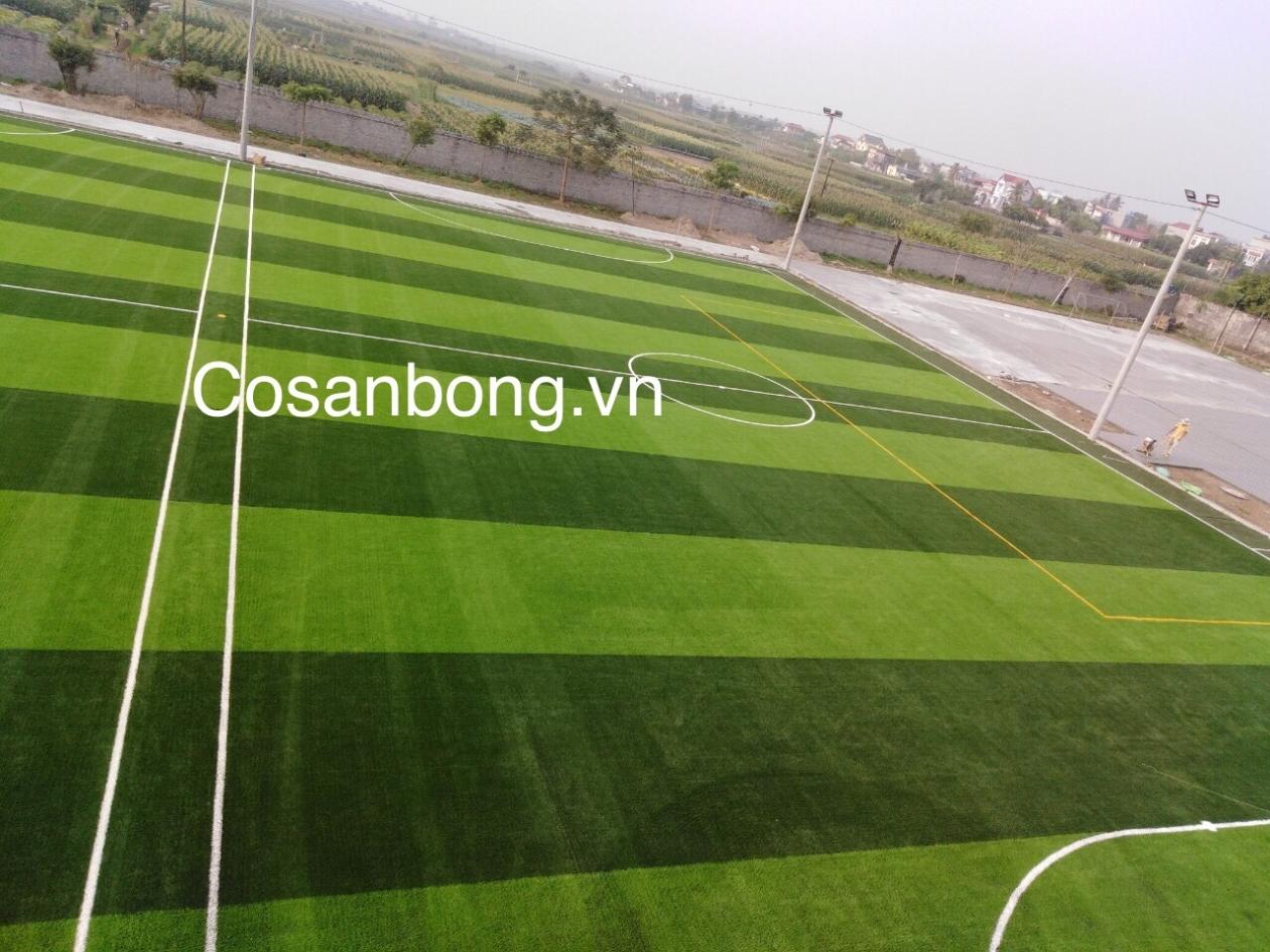 San Bong Quynh Phu _iDegb → Công ty AFD grass