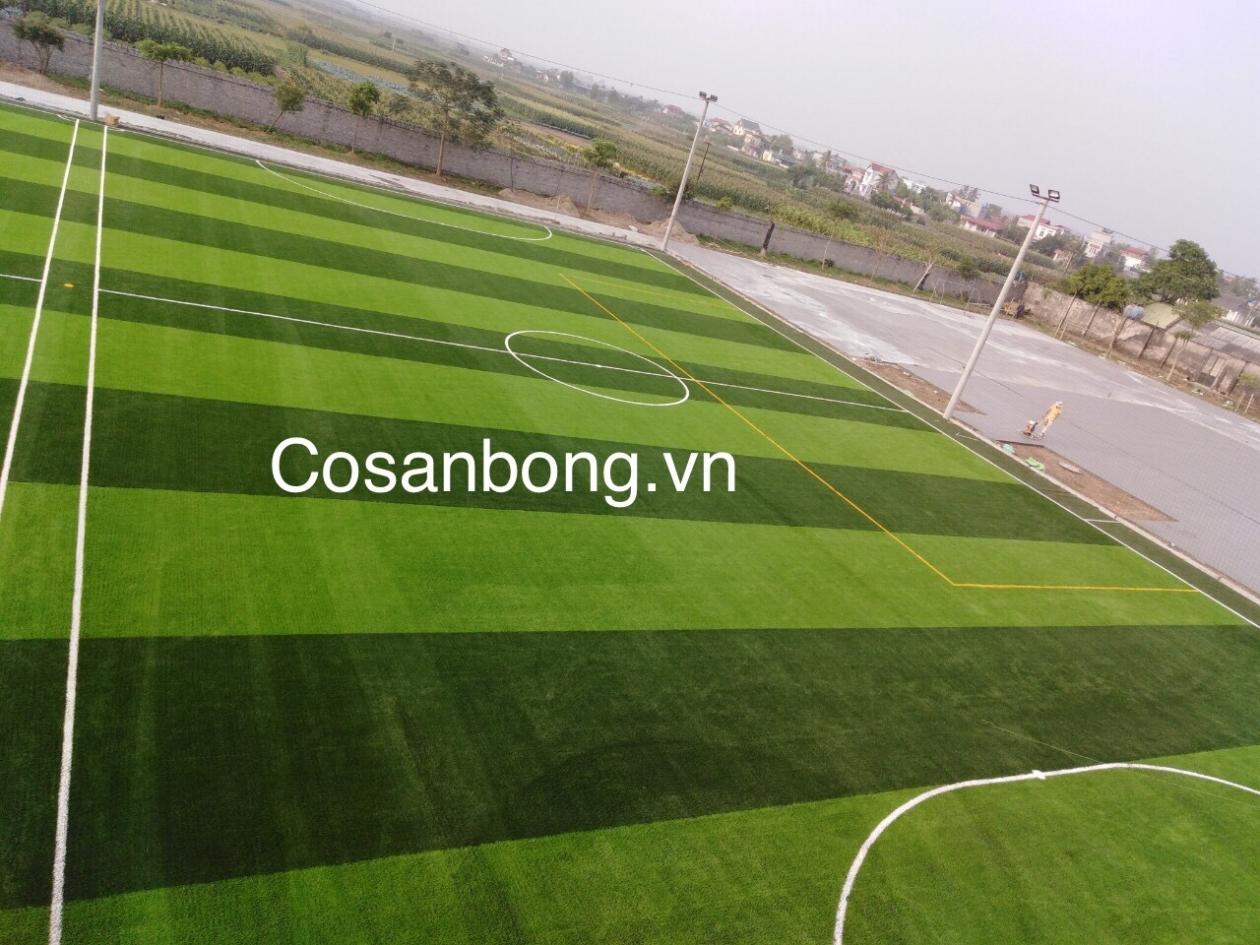 San Bong Quynh Phu _xiW9r → Công ty AFD grass