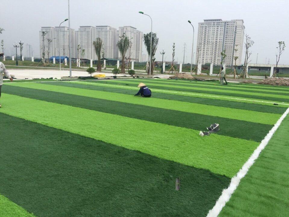 SaN BoNG MINI TRuoNG TIeU HoC Le QUy doN - DuoNG NoI _eGBXe → Công ty AFD grass