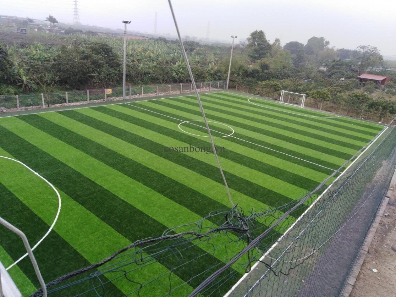 SaN BoNG ANCO LaI Du, HOaI duC Ha NoI _tX3a1 → Công ty AFD grass