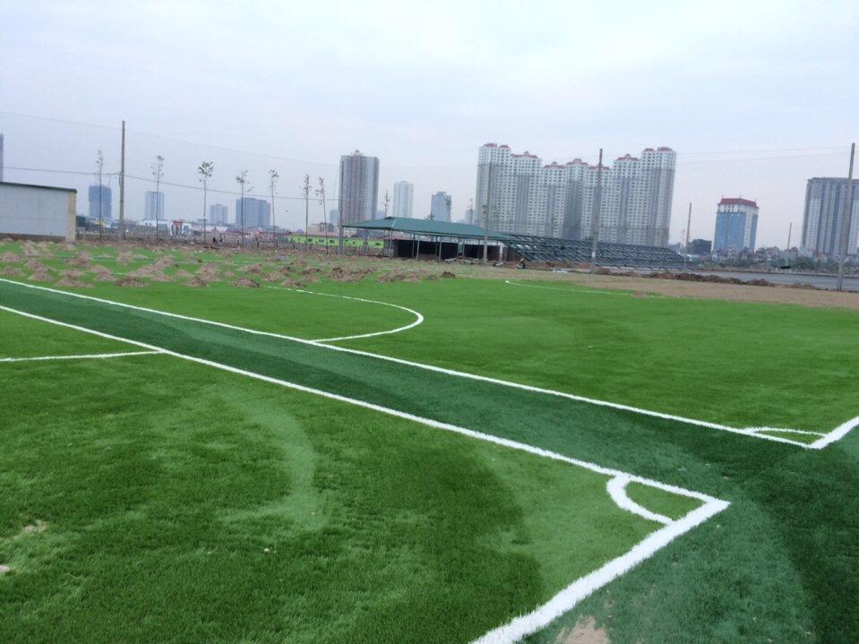 SaN BoNG da CuoNG QUoC Ha doNG _Pofga → Công ty AFD grass