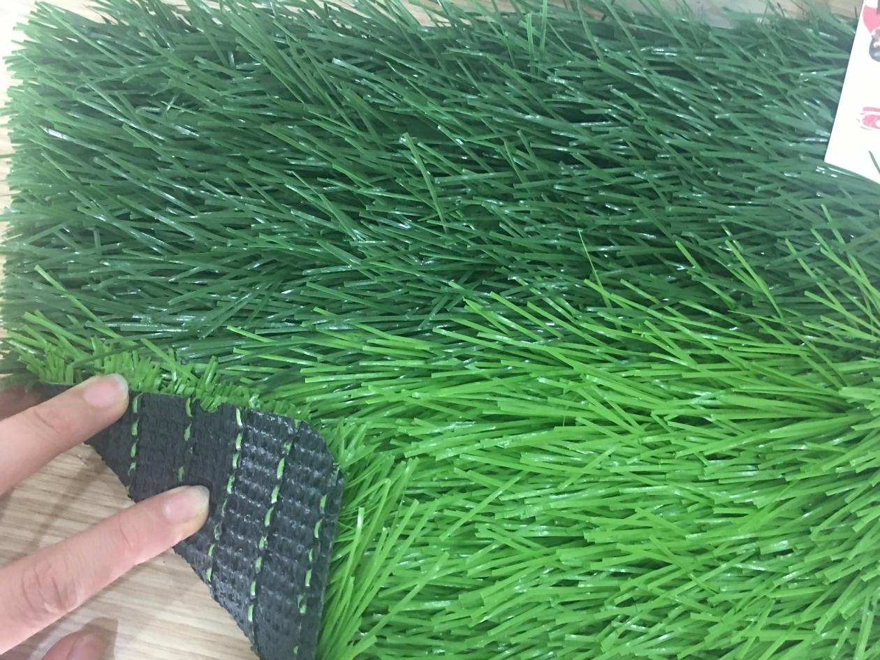 Co nhan tao A650416ZD08801 _YGDRV → Công ty AFD grass
