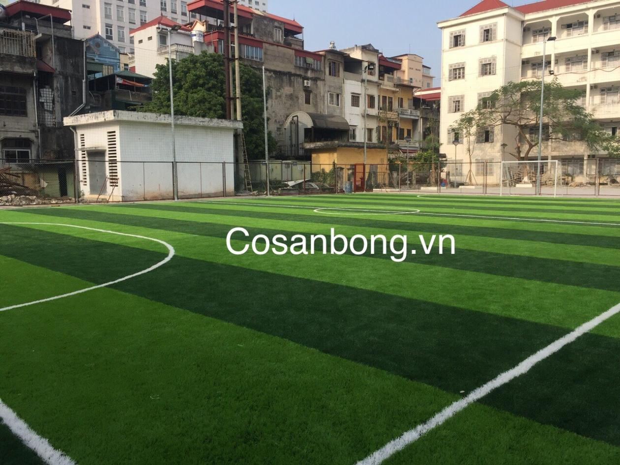 San Bong Buu Chinh Vien Thong  _0JJqJ → Công ty AFD grass