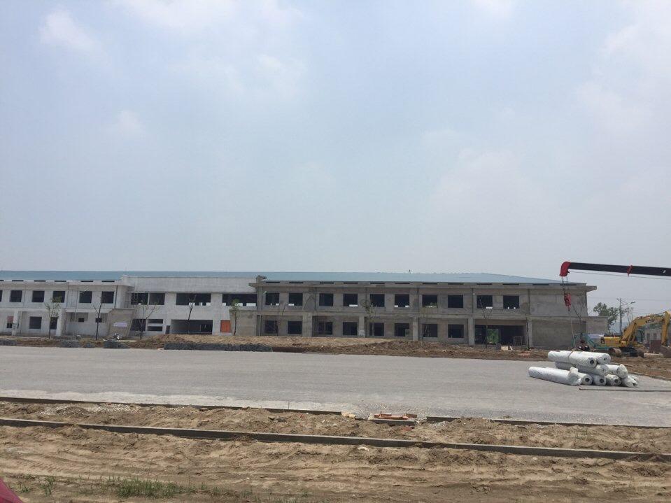 SaN BoNG da CEO TRuoNG CAO daNG daI VIeT _XLkSQ → Công ty AFD grass
