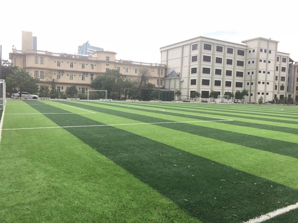 SaN BoNG TGM THANH HOa  _MxOZL → Công ty AFD grass
