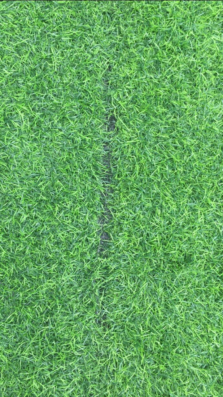 So sanh co nhan tao chat luong tot va kem _ngKWb → Công ty AFD grass