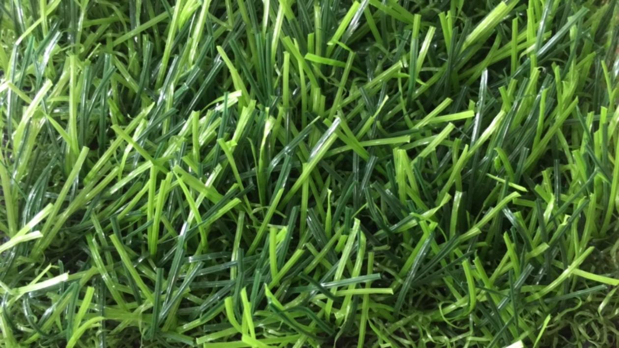 So sanh co nhan tao chat luong tot va kem _jRppt → Công ty AFD grass