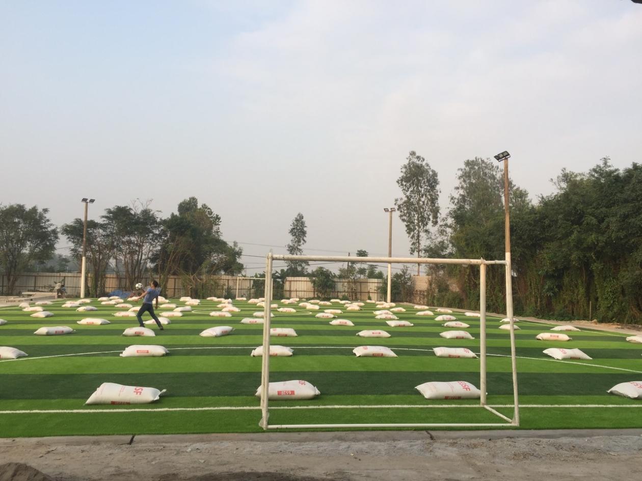 SaN BoNG PHu Ly, Ha NAM _yxFQ7 → Công ty AFD grass