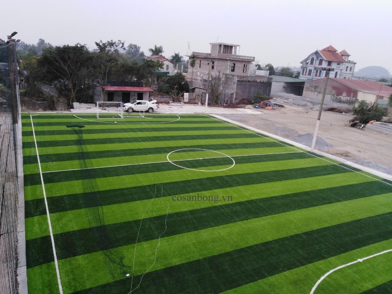 SaN BoNG PHu Ly, Ha NAM _KzEZV → Công ty AFD grass