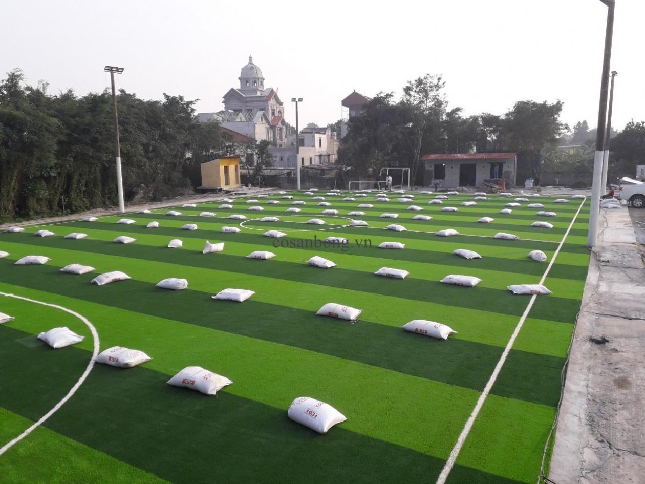 SaN BoNG PHu Ly, Ha NAM _MPIYU → Công ty AFD grass