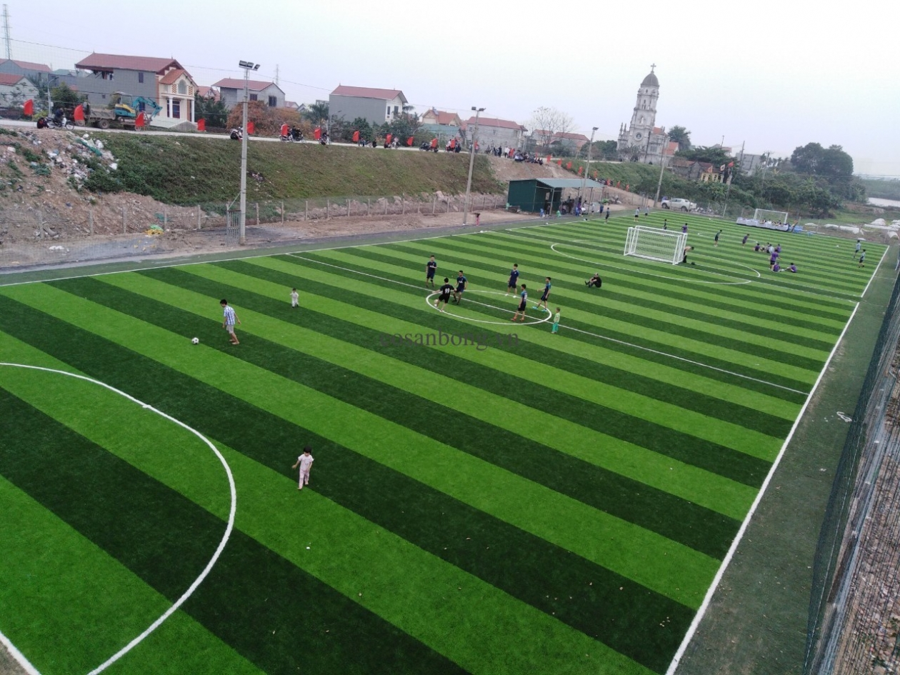 SaN BoNG ANCO LaI Du, HOaI duC Ha NoI _oJWKB → Công ty AFD grass