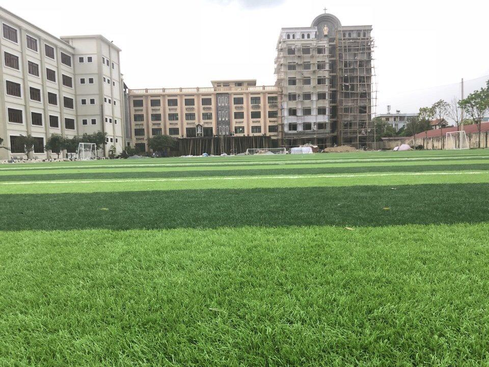 SaN BoNG TGM THANH HOa  _eLsMg → Công ty AFD grass
