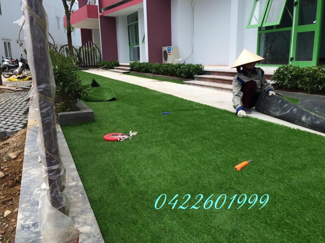 SaN CHoI Co NHaN TaO TRuoNG MaM NON HOA Da HoP - HOa BiNH _D0tl7 → Công ty AFD grass