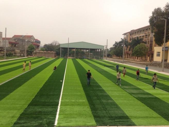 AFD Thi cong san van dong truong dai hoc Su Pham Ha Noi 2 _ygAx1 → Công ty AFD grass